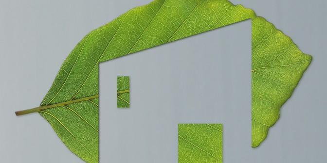 Der Natur ein Stück zurückgeben - Dachbahnen mit Wurzelschutz