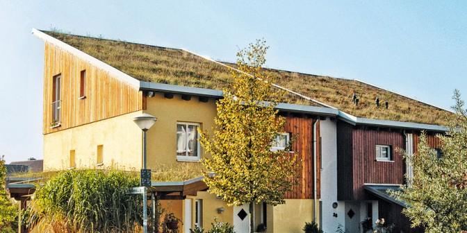 Ökologisches Vorbild am Dach